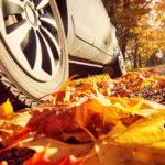 Sturm, Laub und Nebel: Sicher fahren im Herbst